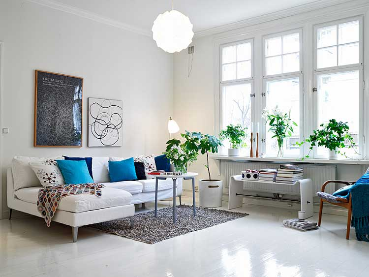 Living Room with Pot Plants