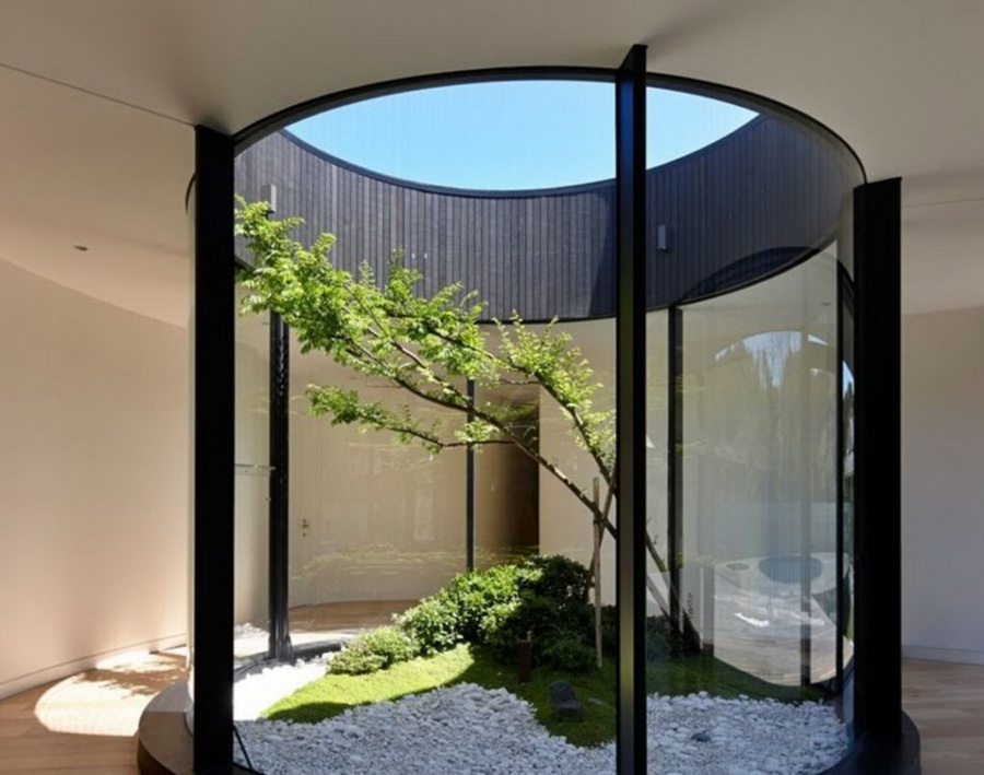 garden in the house with a glass screen