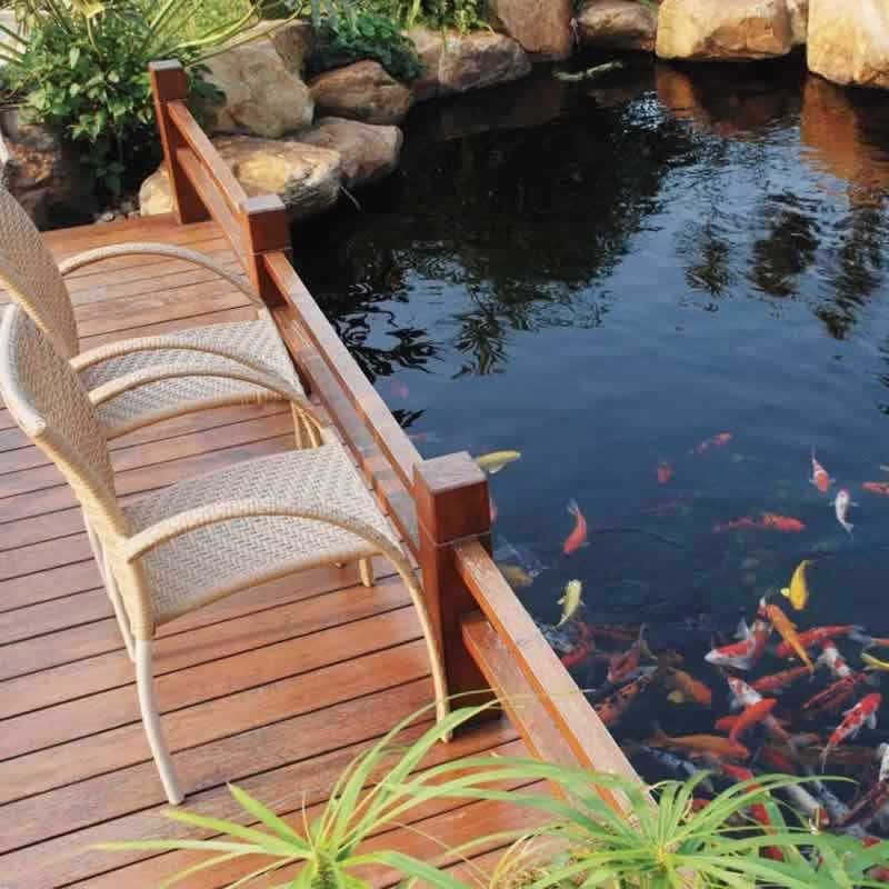 Fish pond design with wooden deck