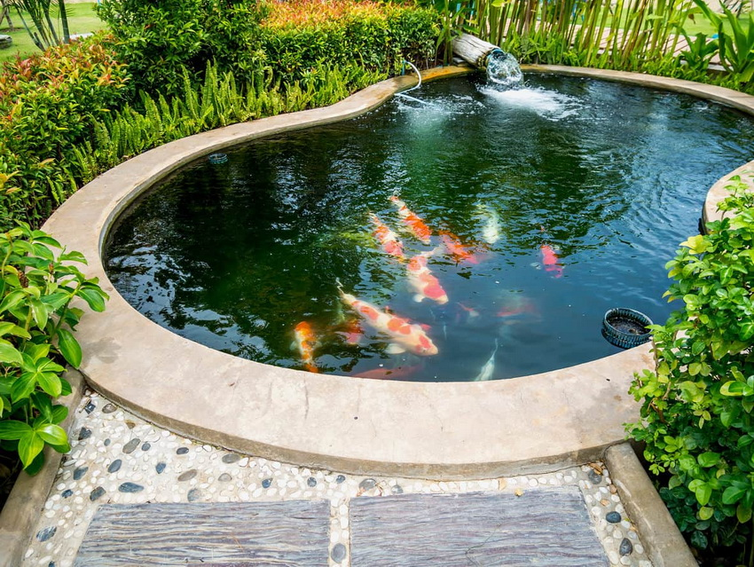 Hidden fish pond design