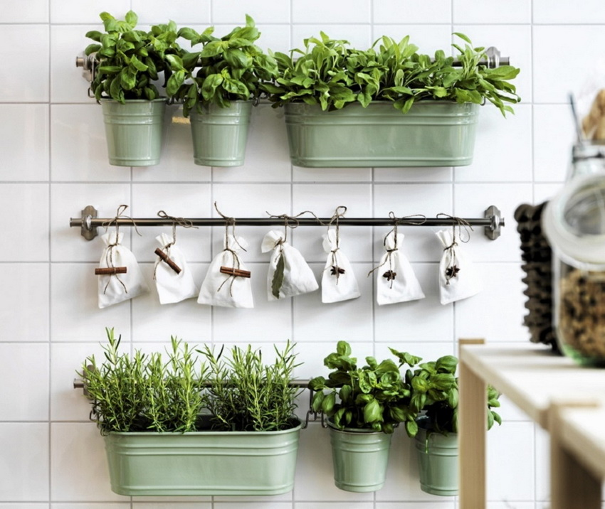 minimalist hanging garden in the Kitchen