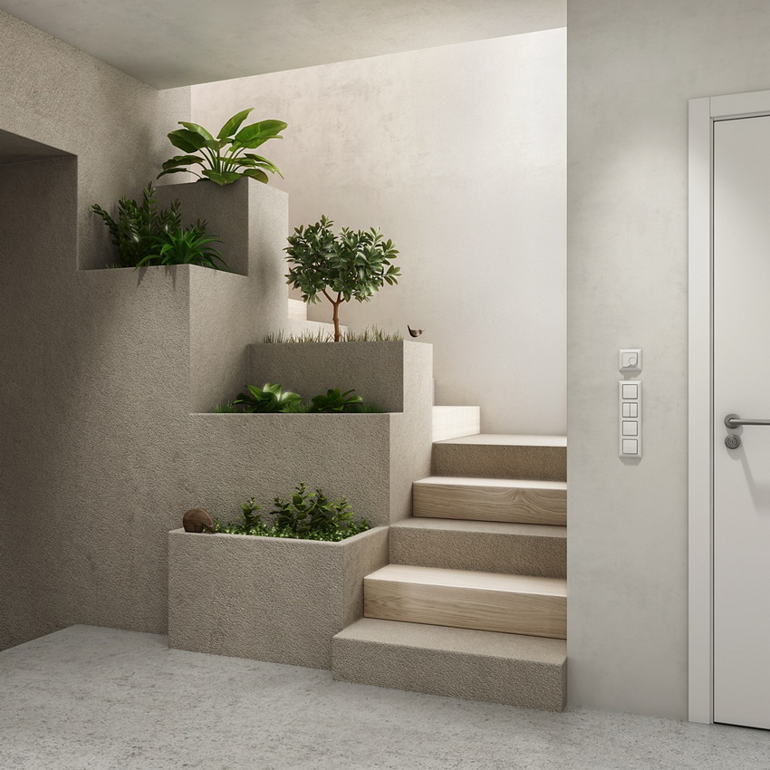 Stair Bordes with Plants picture