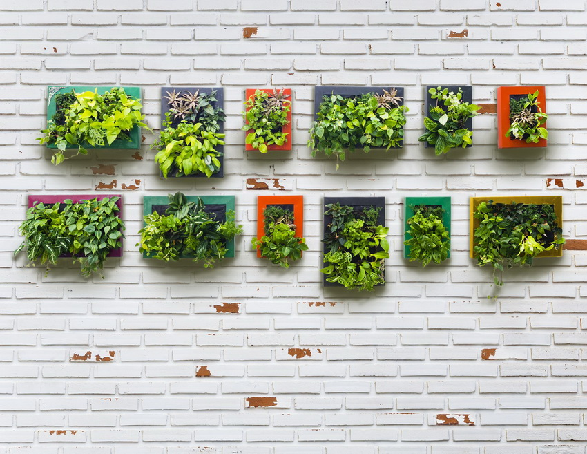 minimalist hanging garden brickwall and vertical garden