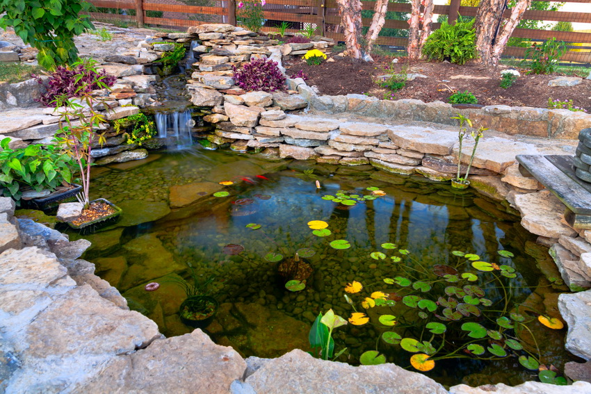 fish pond with a pile of natural stones