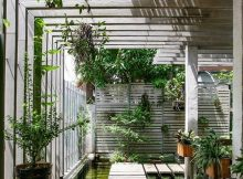 Wood Canopy with Plants