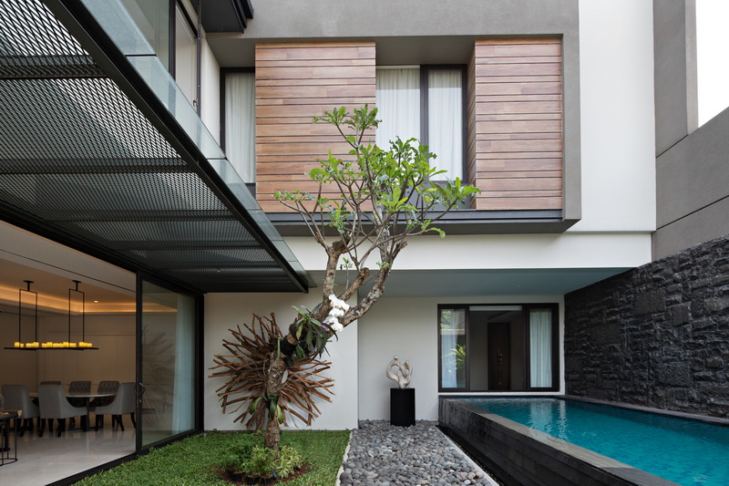 Inner Court with a Minimalist Tropical Garden