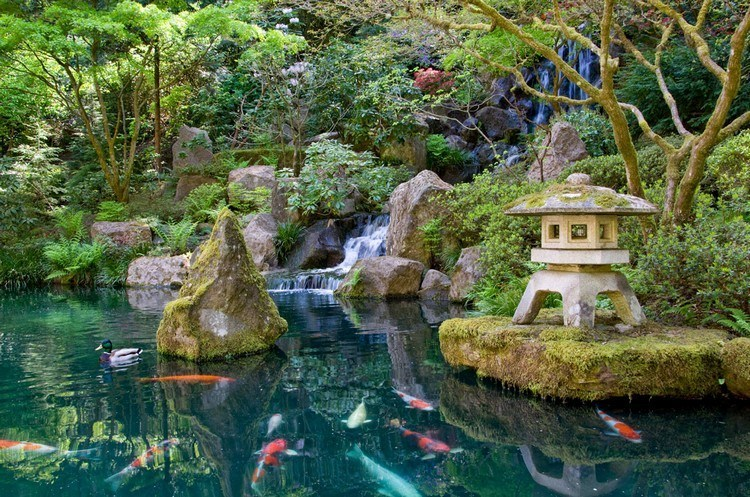 Japanese garden with a large pool