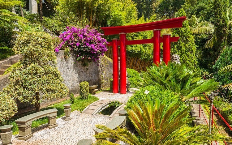 Japanese garden with a red gate