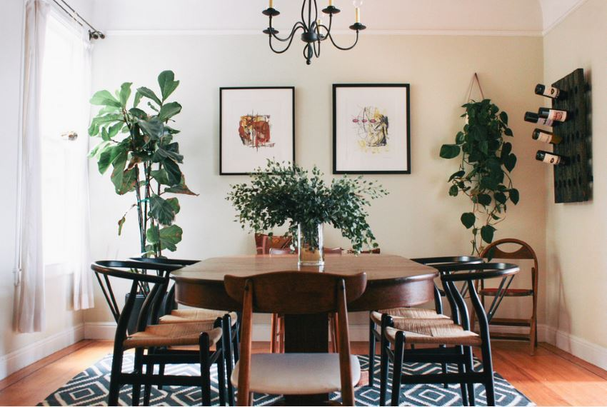 Simple Dining Room Fresh with a Plant