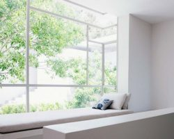 Window design with trim accents